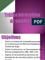 traficointracelulardesustancias-110607194141-phpapp02