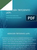Adenosín Tritosfato (Atp)