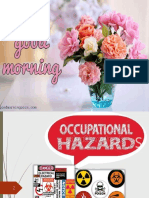 seminar8-occupationalhazards-170722063930.pdf