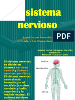 sistema-nervioso-1223743498164505-9.ppt