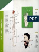 Dizionario Per Immagini p19