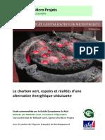 Le-charbon-vert-espoirs-et-réalités-dune-alternative-énergétique-séduisante1.pdf