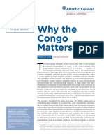 Why the Congo Matters
