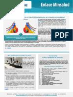 enlace-minsalud-81-rias.pdf