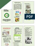 Leaflet Mp-Asi 22-24 Bulan