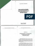 Volpentesta Organiza Proc y Estruct