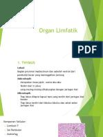 Organ Limfatik