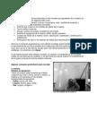 7 Biología Gases y Sus Leyes