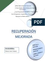 PROCESOS-TERMICOS (1).docx