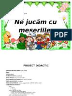 Proiect Mirela
