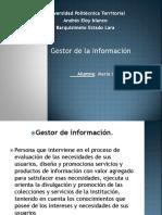 Gestores de La Informacion
