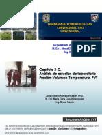 Copia de Cap. 3-C. Presentacion PVTs 2018-2