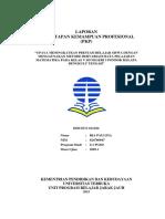 Laporan Pemantapan Kemampuan Profesional (PKP) Ria Paulina