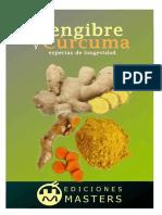 Jengibre y Curcuma (Spanish Edi - Adolfo Perez Agusti