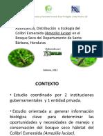 Abundancia, Distribución y Ecología Del Colibrí Esmeralda (Amazilia Luciae) en El Bosque Seco Del Departamento de Santa, Honduras, Febrero 2013