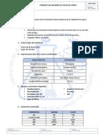 FORMATO de INFORME DE VISITA DE CAMPO moche.docx