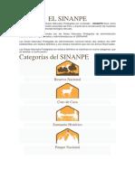EL SINANPE.docx