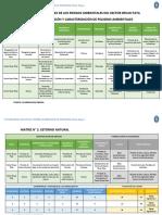 Matriz de Identificación y Caracterización de Peligros Ambientales