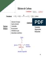Hidratos de Carbono + Pared Celular
