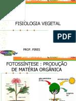 Fisiologia Vegetal 1