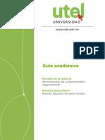 Guia Academica Comp Organ