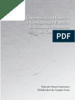 Guimarães e Lemes_Estrutura Produtiva Do Centro Oeste