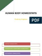 2.-Human-Body-Homeostatis.ppt