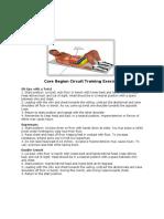 Core Region Circuit Training Exercises