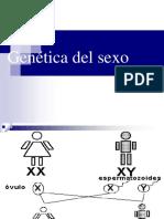 Genetica Del Sexo-09