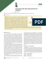 dankovich2011 NP.pdf