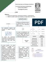 SAPONIFICACIÓN, OBJETIVOS - DIAGRAMA.docx