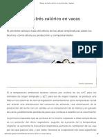 Efectos Del Estrés Calórico en Vacas Lecheras - Agritotal