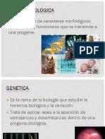 Herencia Autosomica_gus2.pdf