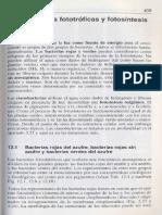 Microbiologia General 12