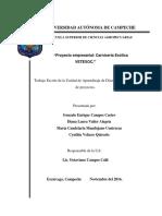 EQ1- Proyecto Final Vetexoc - Diseño y Evaluación de Proyectos.