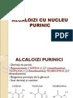 ALCALOIZI+CU+NUCLEU+PURINIC+pp12