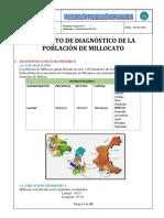 1_DIAGNOSTICO - MILLOCATO