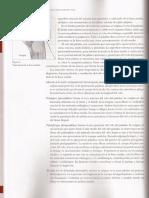 Libro Motricidad Orofacial parte 2.pdf