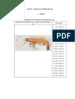 Format Hasil Morfometri Avertebrata Dan Vertebrata 2017