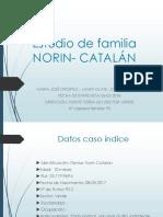 Estudio de Familia Norin-catalan.