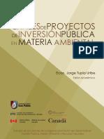 Perfiles de Proyectos Inversion Publica Materia Ambiental