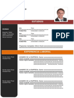 MODELO DE CV.docx