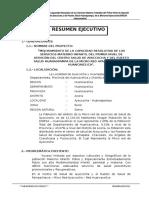 Resumen Ejecutivo Ayaccocha - Huanaspampa