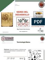 Upsmp Embriologia Genetica Del Desarrollo