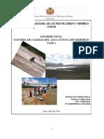 Informe Final Control y Calidad Del Agua 2013-Cuenca Alta Rio Bermejio