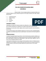 TRABAJO DE  ATRAPANIEBLAS.pdf