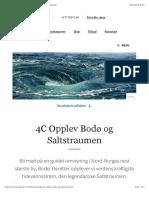 Utflukt i Norge