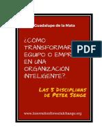 Guadalupe-de-la-Mata-Organizaciones-y-equipos-inteligentes-.pdf