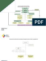 Estructura Organica Funcional ANT