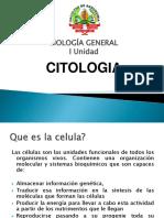10-Citologia.pptx